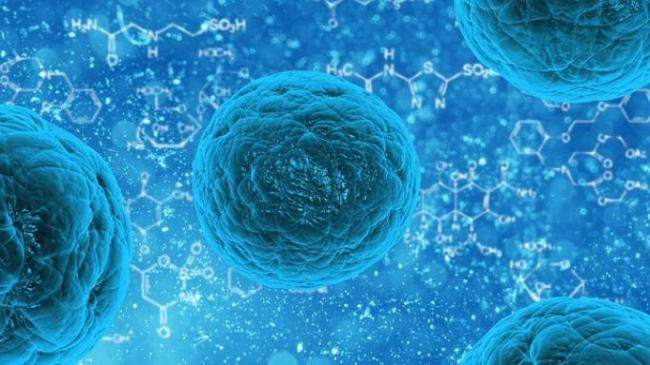 Which Stem Cell Therapy Is Right For Your Chronic Pain?